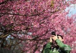 全球最安靜景點竟在台灣 美籍科學家曝背後原因