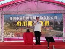 桃市府斥資5千萬元打造 蘆竹海湖運動森林公園今啟用