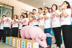 國民黨反美豬公投 中選會:先舉行聽證釐清爭議點