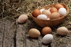 全聯買到「花紋恐龍蛋」內行人曝別水洗:是好蛋