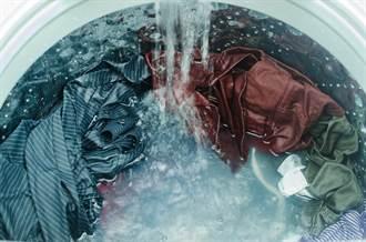 洗衣機內漂詭異「黑髮菜」內行人曝真兇:別再加了