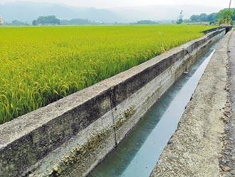 田中清潔隊廢水 直排灌溉溝渠