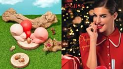 限量「小松鼠彩妝盒」讓人少女心爆發 4款多色彩盤意圖使人包色