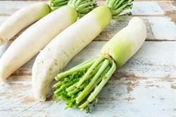 秋天就要吃白色食物 這6種蔬菜身體最愛