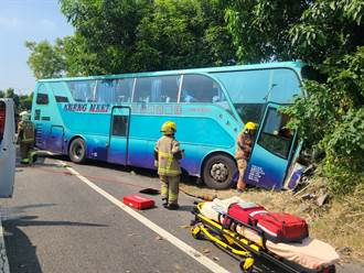 奇美醫院交通車撞路樹 司機手骨折