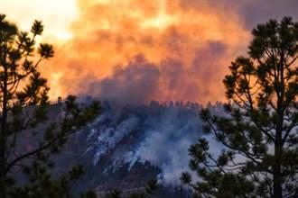 科羅拉多州史上最大祝融之禍 燃燒面積近這個城市3倍大小