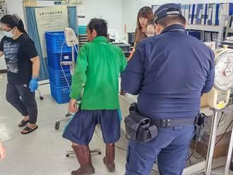 竹縣泰崗農民採果遇蜂螫  橫山警護送就醫脫險