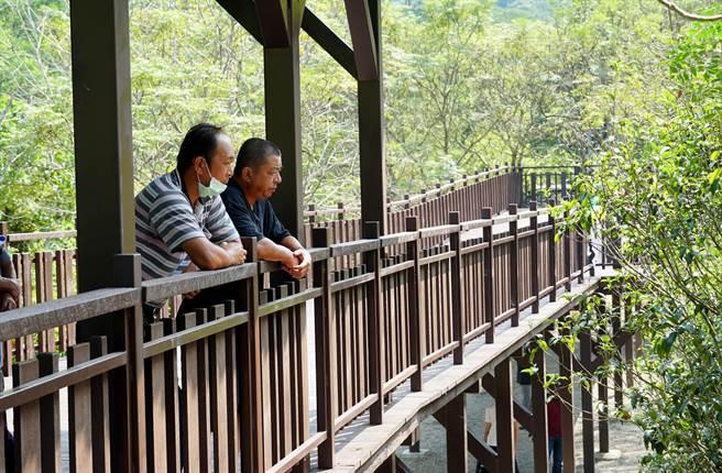 青桐林生態園區,因原本木棧道等設施腐朽,經投入經費2169萬元整修完成。(黃國峰攝)