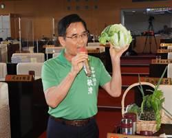 台中市民每年疑吃下3萬多噸有農藥顧慮蔬果 農業局:採購質譜儀把關