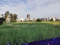 台南地價上漲 市府:標售土地回收開發成本 盈餘回饋市民