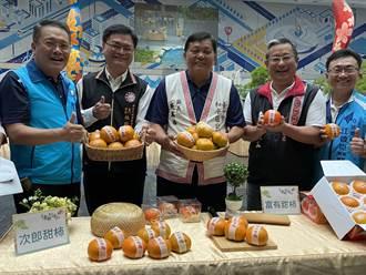 和平區長行銷甜柿、溫泉 秋天慢遊泰雅原住民部落好時節