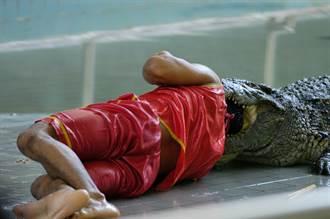 3公尺巨鱷湖中緊緊跟隨 游泳男鏡頭前突被拖下水慘死