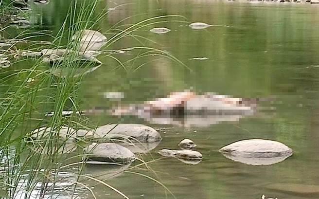 劉姓男子托夢說「在水裡」,果然救難人員就在溪流中發現遺體。(嘉義縣救難協會提供/呂妍庭嘉義傳真)