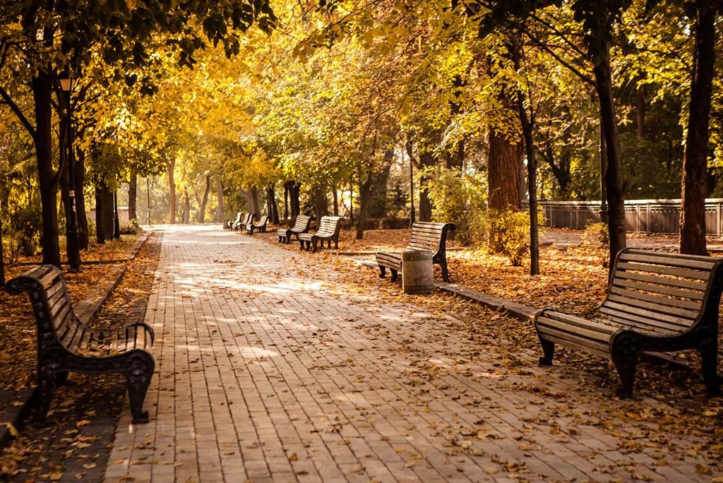 「霜降」含有天氣漸冷、初霜出現的意思,也是秋季的最後一個節氣,意味著冬天即將到來。(圖/Shutterstock)