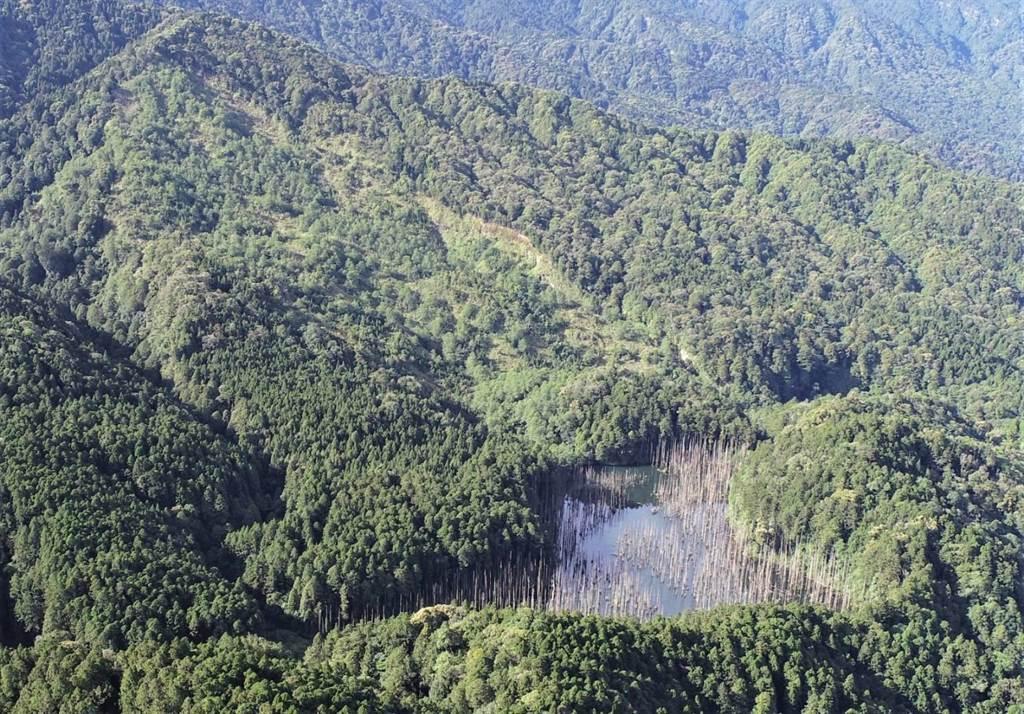 2020年水漾森林周邊環境空拍,原崩塌裸露面已復育。(嘉義林管處提供/張亦惠嘉縣傳真)