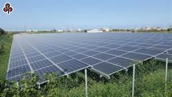 污染農地改種電 地主可領取每公頃40萬補助