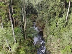 水漾森林災害評估出爐了 遇50年大洪水也沒問題