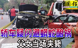 為閃巨蟒衝對向道撞來車 父女慘夾死車內
