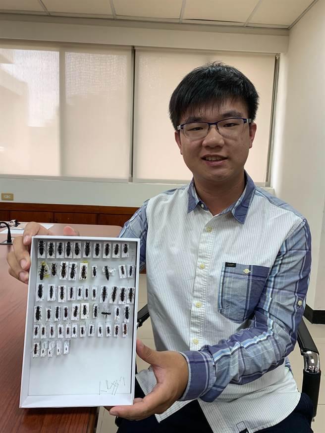 中興大學昆蟲系三年級的胡芳碩從小喜愛昆蟲,入學2年多已發表10篇他對隱翅蟲的研究獲登國際期刊。(林欣儀攝)