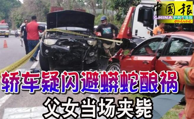 一對父女疑為閃避路中巨蟒,失控撞進對向車道與來車相撞,當場遭夾死車內。(圖/翻攝自馬來西亞中國報)