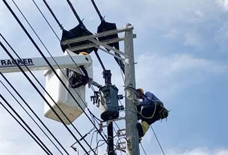 沿海颳起如強颱狂風 福興鄉高壓線斷落658戶停電