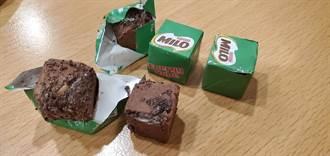 噁!剖开巧克力惊现「蠕动肥活虫」 她自嘲:吃完活力满满