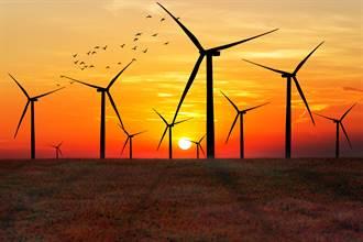 風力發電機對生態安全?丹麥研究:逾99%鳥類會躲葉片