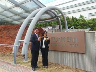 典藏清代末年古窯之美 「友達西大墩窯文化館」24日開幕