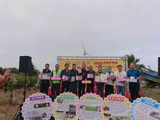 大甲芋頭節產業文化活動 吸引逾千人參加