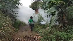 林口新增2例登革熱 將比對病毒釐清是否為群聚感染