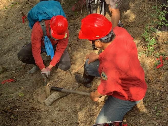 新竹林管處與地方社團合力以手作方式,重整牧羊古道。(新竹林管處提供/謝明俊苗栗傳真)