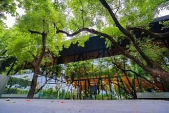 全台唯一森林系圖書館!通透玻璃屋讓你與自然零距離
