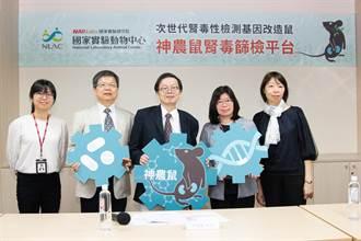 國研院打造神農鼠腎毒篩檢平台 助攻腎病檢測
