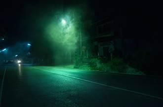 半夜被跟蹤回頭看卻沒人 低頭見「超毛歹徒」屁顛滾過來