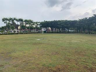 龍潭槌球場施工後礫石遍布、草皮乾枯 民眾要求市府改善