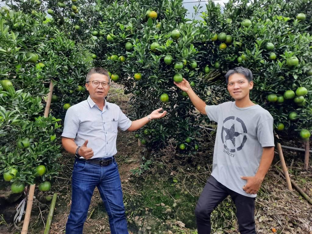 農糧署南區分署長姚志旺(左),將於11月初接任農糧署副署長。(農糧署南區分署提供/李宜杰台南傳真)