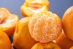 吃橘子狂拔「白丝」 老饕摇头嘆:一堆人吃错10几年