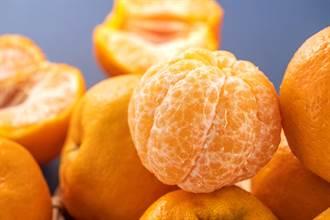 吃橘子狂拔「白絲」 老饕搖頭嘆:一堆人吃錯10幾年