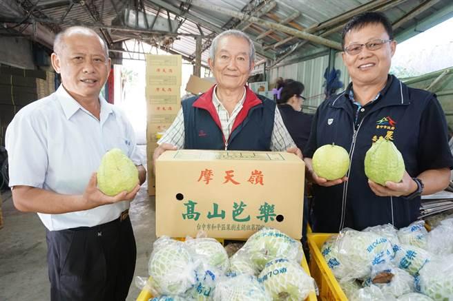 和平區農會總幹事李順冬(左)大力推薦摩天嶺芭樂。(王文吉攝)