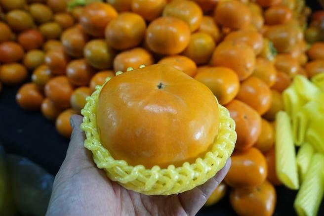 台中市和平區摩天嶺「花御所」甜柿已經上市,果皮帶有果粉。。(王文吉攝)