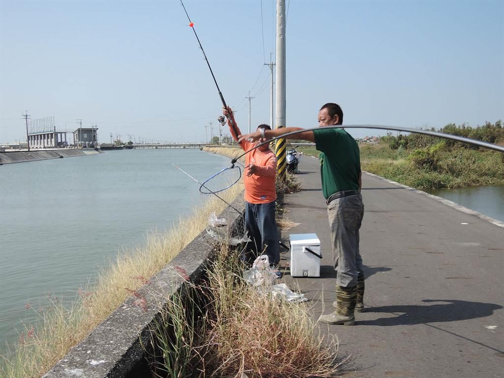 嘉義縣東石鄉港墘排水堤岸是近日釣客流傳的私房釣點。(張毓翎攝)