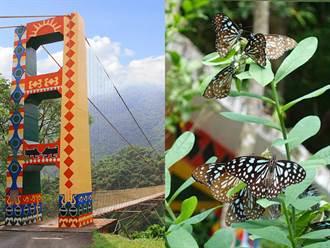 生態奇景!探索高雄茂林最美幽谷秘境 與百萬紫斑蝶翩翩共舞