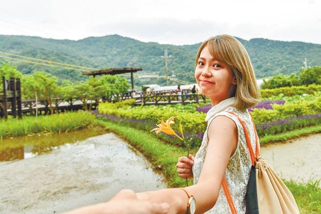 台北市公运处11月起推出5线公车一日票,只要30元就能无限次搭乘同一路线公车。图为白石湖同心池。(本报资料照片)