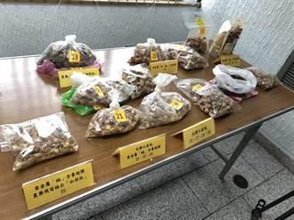 秋冬進補小心 巿售菇蕈乾貨4成5農藥或重金屬超標