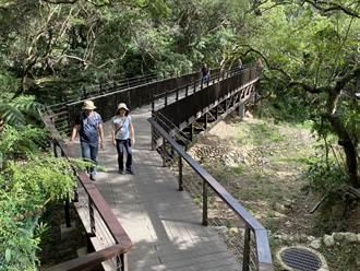 「溪溝路廊」啟用 虎頭山3系統6步道完工