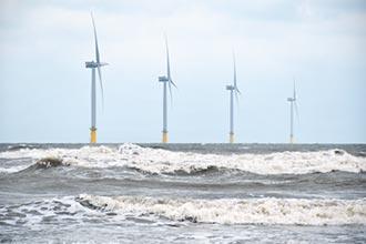 能源政策面面觀》國家融資保證 開發商爽玩無本生意