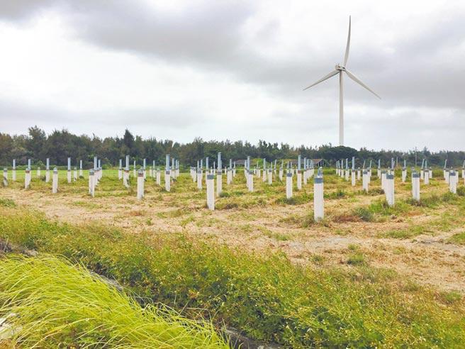 雲林縣在4年前配合農委會畫設不利耕作區近1219公頃作為太陽能專區,圖為太陽能板的基樁。(本報資料照片)