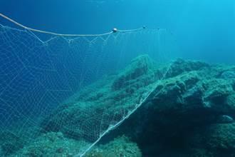 拉起魚網捕獲10隻「海洋稀客」 漁民一看嚇傻全放生