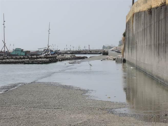 嘉義縣東石鄉舊漁港邊的堤外道路今日中午漲潮前,海水緩緩淹進路面。(張毓翎攝)