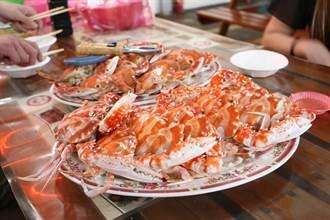 萬里蟹怎麼煮?龜吼漁夫市集立冬滿500抽大獎